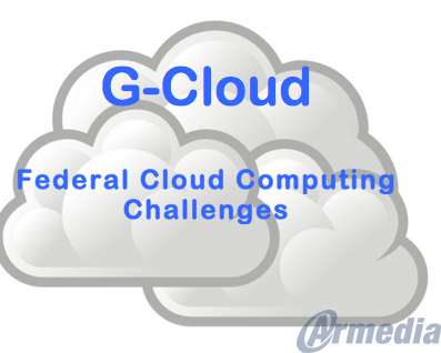 Challenges to Federal Cloud Computing Strategies