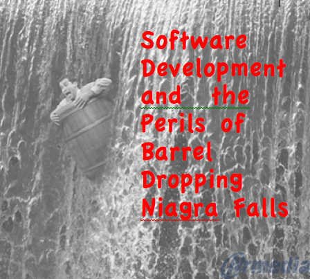 Software Development and the Perils of Barrel Dropping Niagra Falls