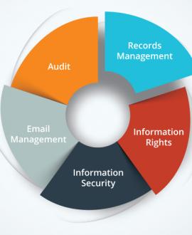 Information Governance plan phases