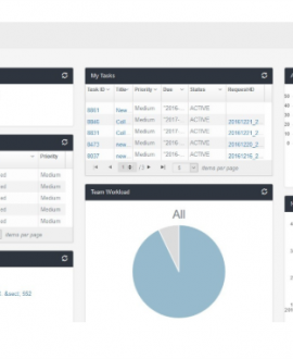 ArkCase FOIA Dashboard Modern Sftware Solution